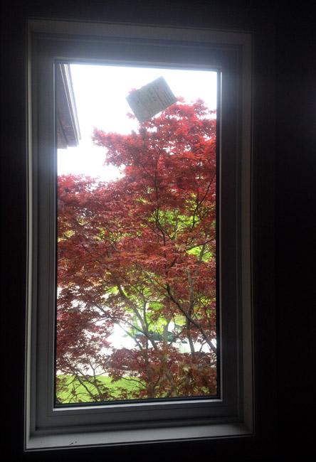 Fixed Casement Window fixc8