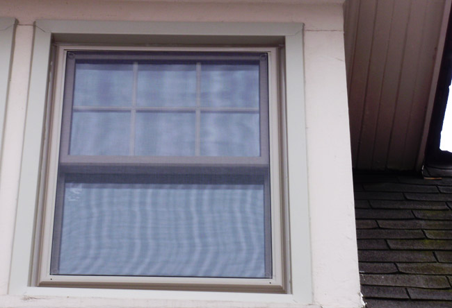 Double Hung Windows sh6